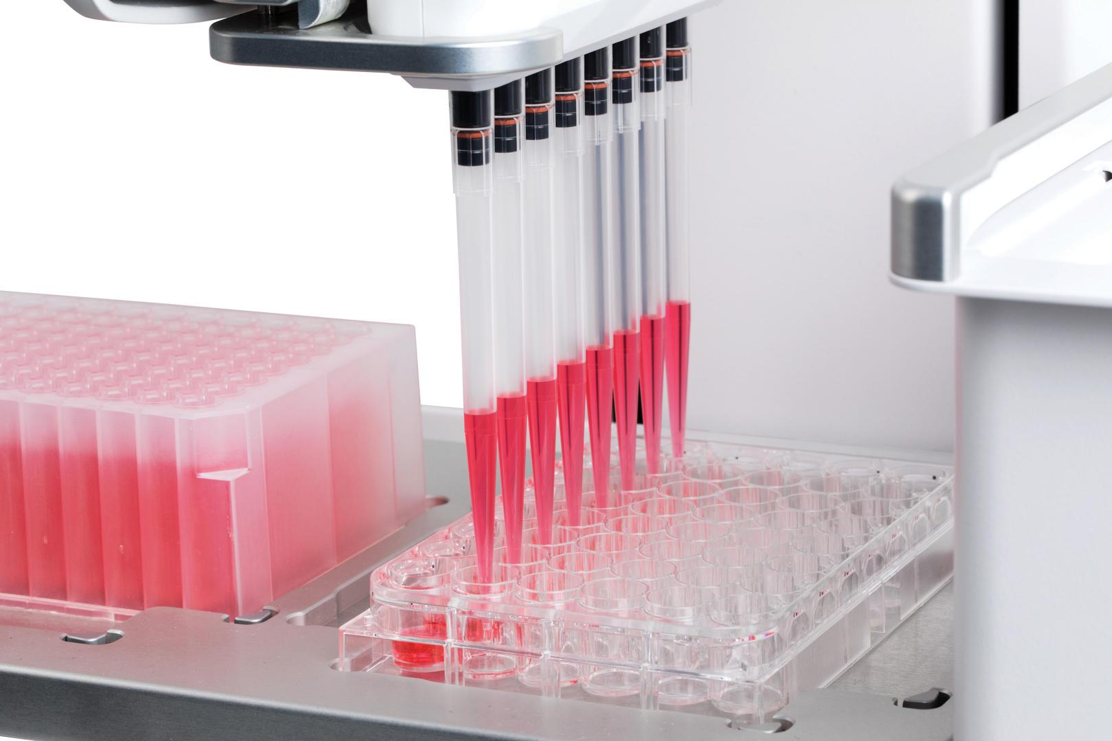 使用 ASSIST PLUS 移液工作站进行孔板填充 & 试剂添加