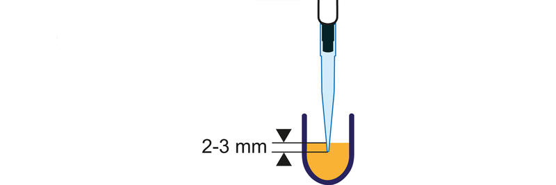 pipette tip immersed just below the liquid's surface in a well